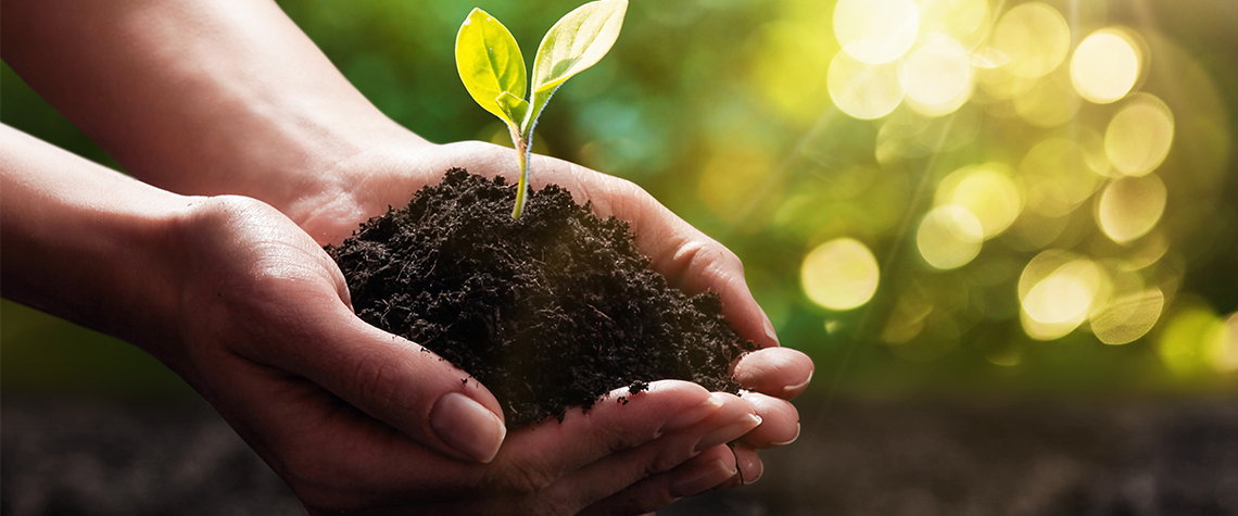 3 Simple Ways to Make your Business A Little More Green